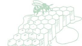 Light green Mary Kay skin care ingredient illustration of honeycomb with a bee